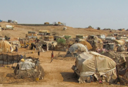 online-course-rights-of-refugees