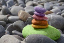 online-webinar-mindful-resistance