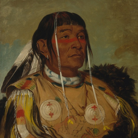 native-american-online-course